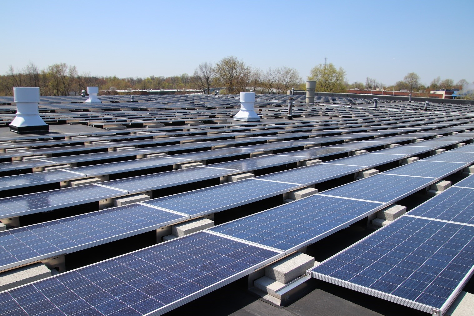 STI rooftop solar array