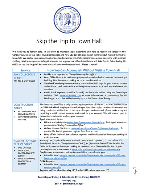 Skip the Trip to Town Hall Flyer